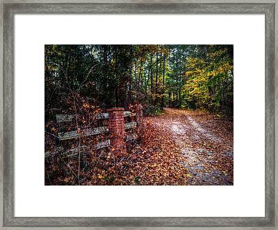 Texas Piney Woods Framed Print by Linda Unger