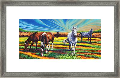Framed Print featuring the painting Texas Quarter Horses by Greg Skrtic