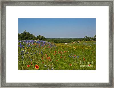 Texas Roadside Bling Framed Print