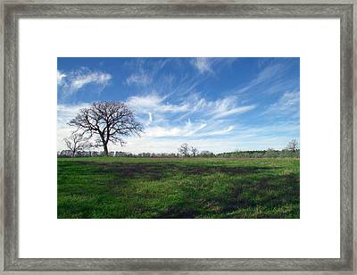 Texas Sky Framed Print by Brian Harig
