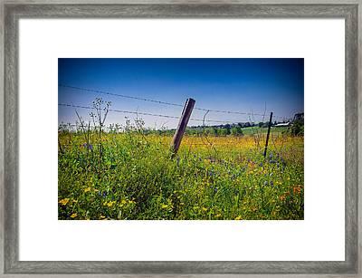 Texas Spring Fling Framed Print