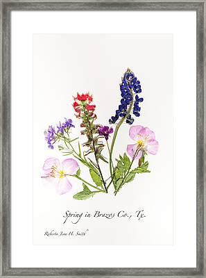 Texas Spring Flowers Framed Print
