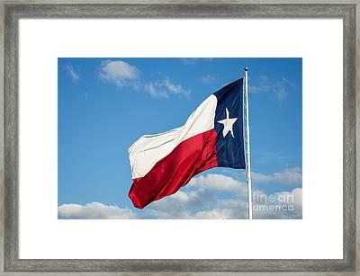 State Flag Of Texas Framed Print