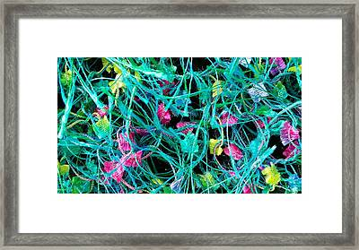 Textile Forest Framed Print by Mark Victors