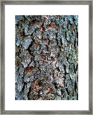 Textural Turquoise Rust Gray  Framed Print