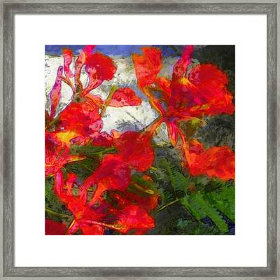 Textured Flamboyant Flowers - Square Framed Print