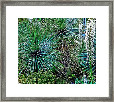 Textures Framed Print by Claudette Bujold-Poirier