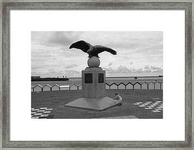 Tha Eagle And The Child Framed Print by Aidan Moran