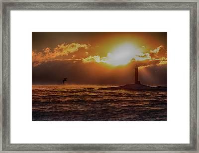 Thacher Island Lighthouse Seagull Framed Print by Jeff Folger