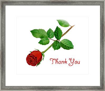 Thank You Card Red Rose Framed Print by Irina Sztukowski