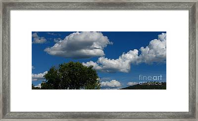 Thank You  Framed Print by Greg Patzer