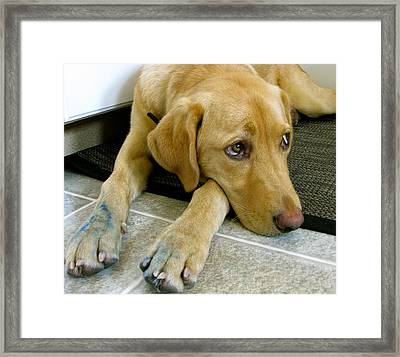 That Blue Pen Was  Finger Licking Good Framed Print by Kathy King