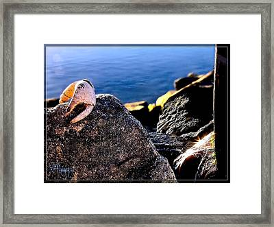That Claw Thing - C'mon Give Me A Hand Framed Print