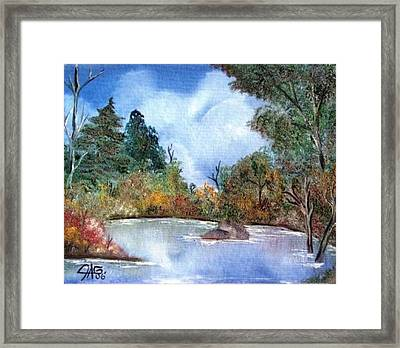 That Emerald Place Of Natures Beauty At Looking Glass Pond Framed Print