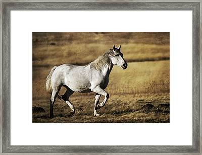 That Golden Hour Framed Print by Wes and Dotty Weber