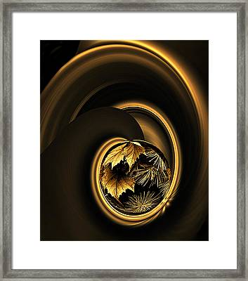 Framed Print featuring the photograph That Midas Touch by Judy  Johnson