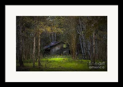 Wood Shed Framed Prints