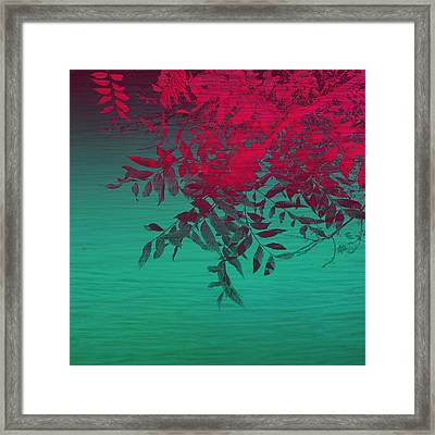 That Tropical Feeling Framed Print by Ann Powell
