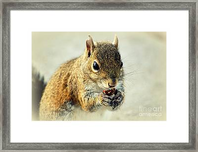 That's Now Some Good Food Framed Print