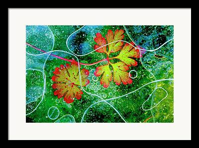 Alga Framed Prints