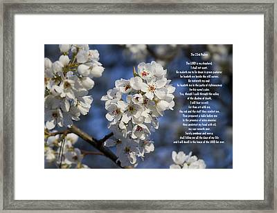 The 23rd Psalms Framed Print by Kathy Clark