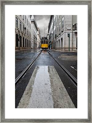 The 28 Framed Print by Jorge Maia