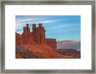 The 3 Gossips  Framed Print