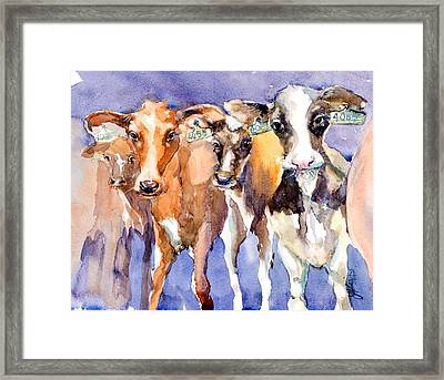 The 408 Girls Framed Print by Judith Levins