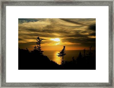 The Acadian Trail Framed Print by Jason Lees