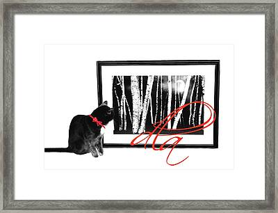 The Capture Framed Print by Diana Angstadt