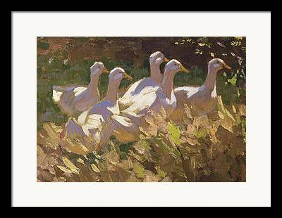 Gaggle Framed Prints