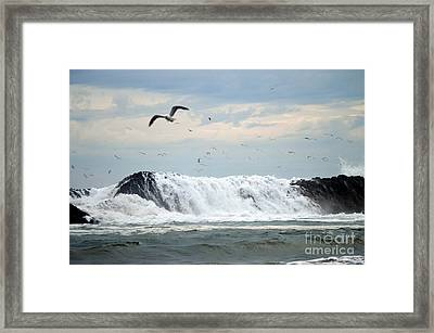 The Aftermath  Framed Print by Sheldon Blackwell