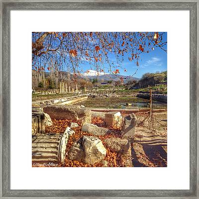 The Agora At Aphrodisias Framed Print by Auntieblues