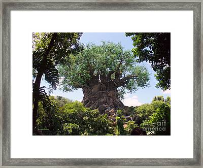 The Amazing Tree Of Life  Framed Print