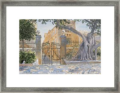 The Ancient Tree Framed Print by Lucy Willis