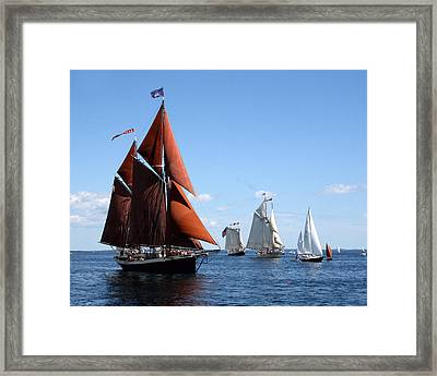 The Angelique  Framed Print by Colleen Shaw Gleason