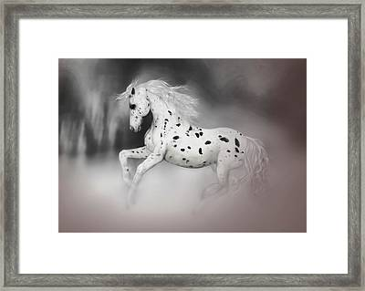 Framed Print featuring the painting The Appaloosa by Valerie Anne Kelly