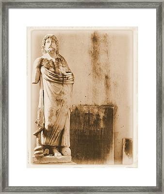 Framed Print featuring the photograph The Apostle by Nadalyn Larsen