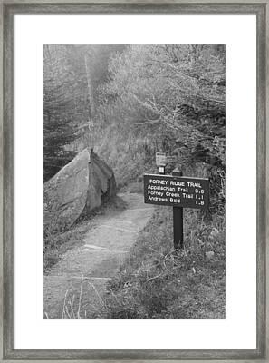 The Appalachian Trail Framed Print by Dan Sproul