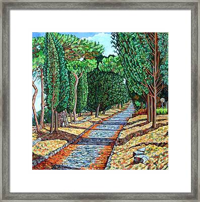The Appia Antica Framed Print by Noel Paine