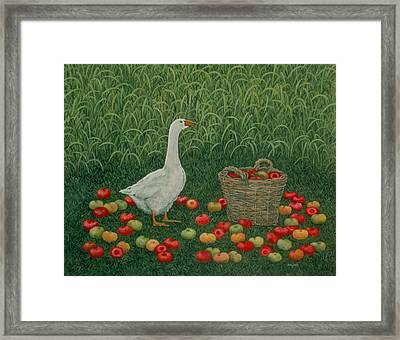 The Apple Basket Framed Print by Ditz