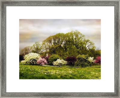 The Apple Orchard Framed Print by Jessica Jenney