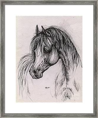 The Arabian Horse With Thick Mane Framed Print by Angel  Tarantella