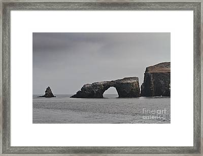 The Arch At Anacapa Island Framed Print by Mitch Shindelbower