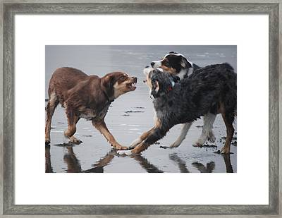 The Argument Framed Print by Richard Hinger