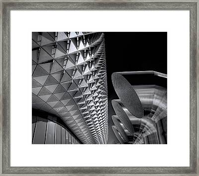 The Armadillo Awakes Framed Print