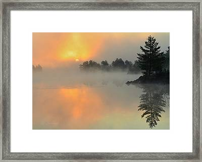 The Arrival Framed Print