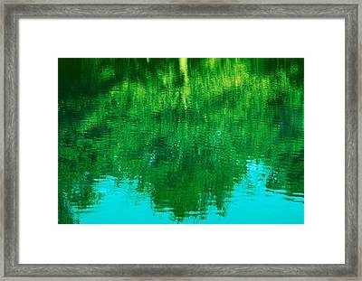 Framed Print featuring the photograph Art Of Nature by Kellice Swaggerty