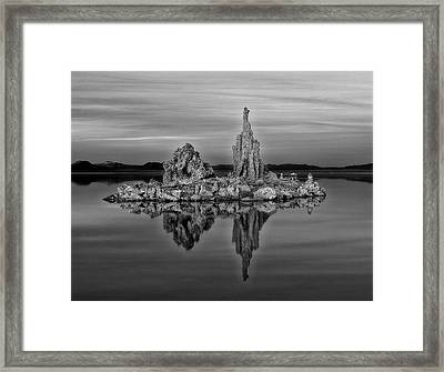 The Art Of Nature Framed Print by Thomas Born