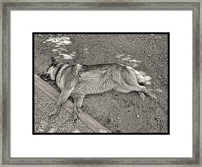The Art Of Relaxed Sleeping Framed Print by Menega Sabidussi